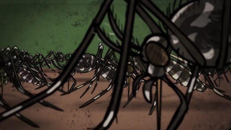 Mückenalarm